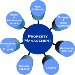 property management expert Lafayette